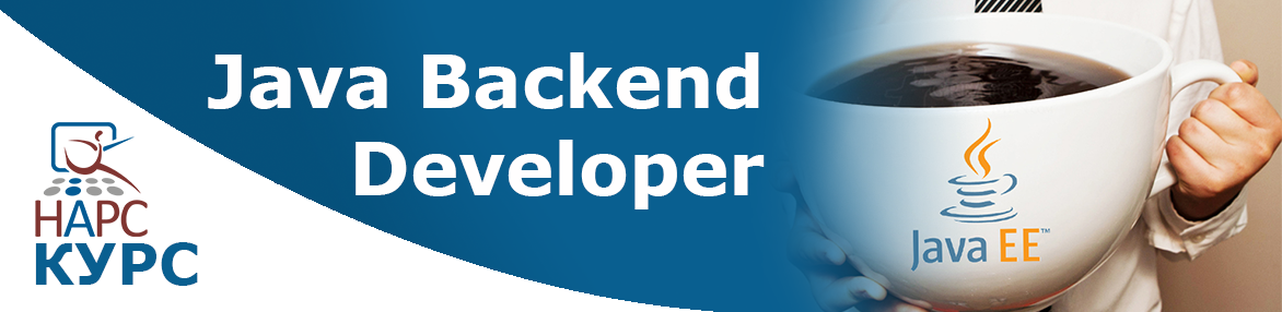 Java Backend Developer